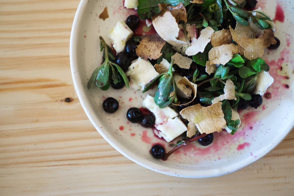 Melinda Mae cheese, sweet and sour blueberries, elderflower, purslane, sorrel and rye.  Photo by Alycia Chrosniak