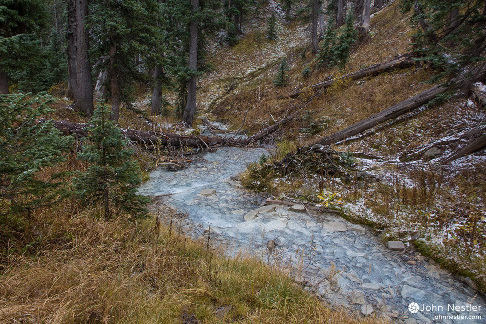 There are a multitude beautiful creeks to refill at along Colorado Trail, including this one in San Juan National Forest.