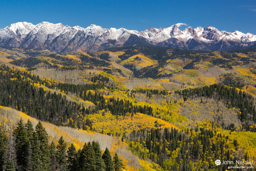 A gorgeous view of late-season aspen colors leading up snow capped mountains. Shot prior to the Indian Ridge section leading towards Kennebec Trailhead in Segment 27.