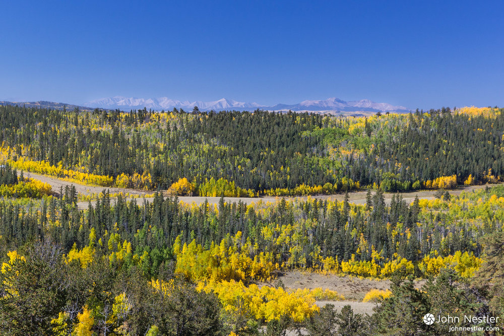 Looking out over South Park, CO toward the Continental Divide while heading towards Kenosha Pass in Segment 5. This was by far the most beautiful section for aspens.