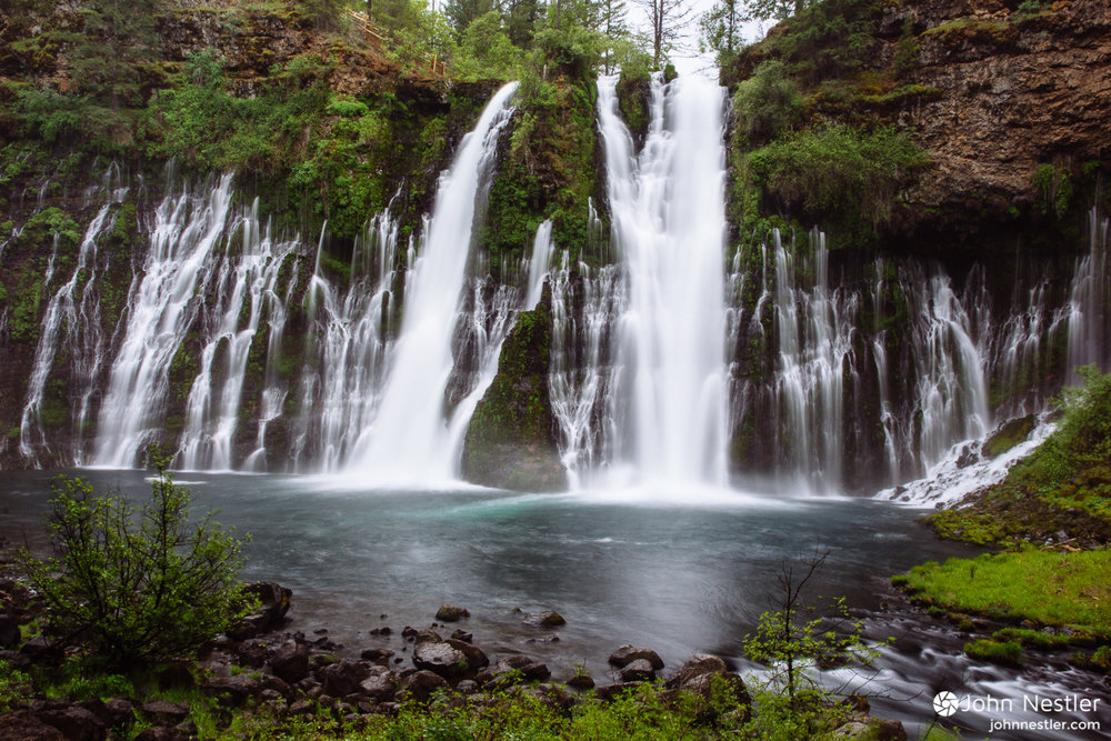 Water falls over 100 feet from the top of  Burney Falls , which was declared a National Natural Landmark by Teddy Roosevelt in 1954. Notice the layer of water deposited on the rock band mid-way up the falls.