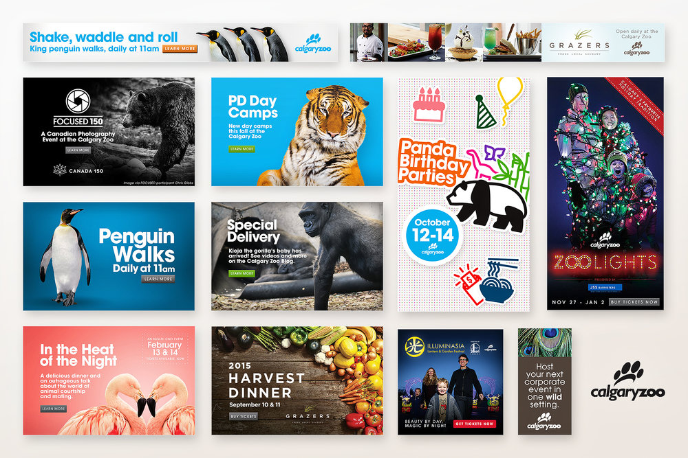 Calgary Zoo - Digital ads and social media graphics