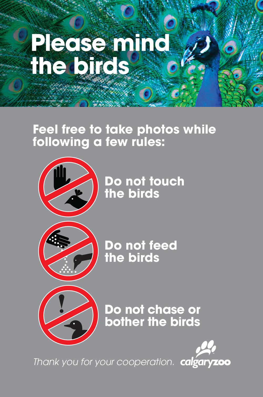 JTAD_Zoo_Peacock_Sign.jpg