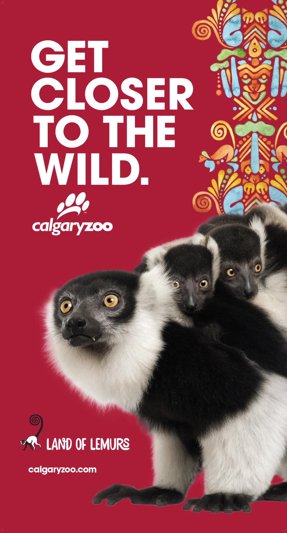 JTAD_Zoo_LemurBanner.jpg