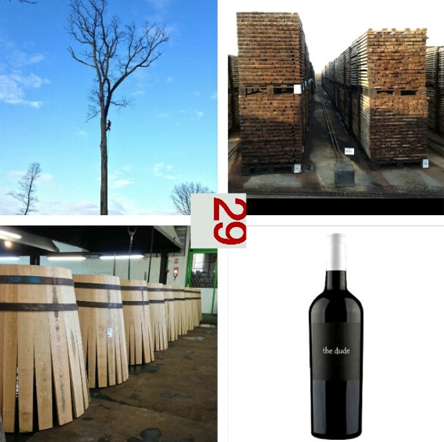 Canepa Koch wine | VAULT29
