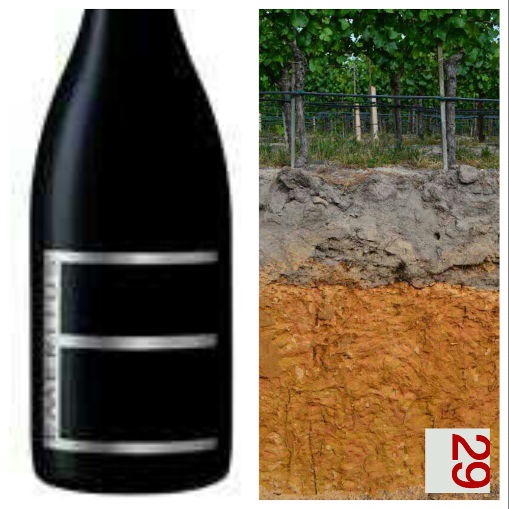 Emeritus Pinot Noir Wine | VAULT29