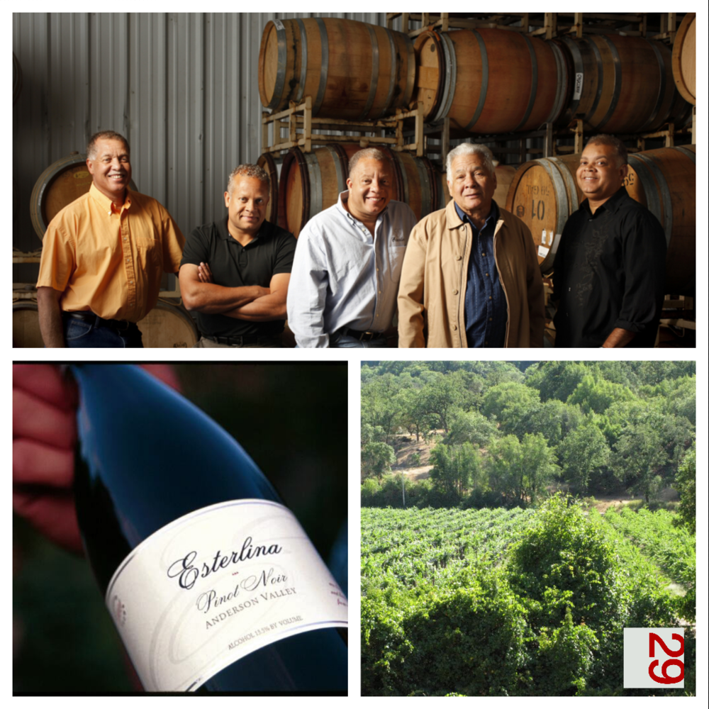 Esterlina Vineyard & Winery | VAULT29