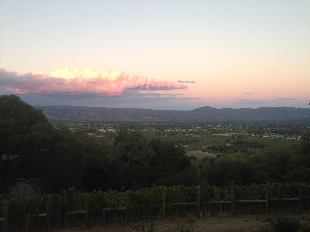 Anthem_view-bench overlooking North Napa.jpg