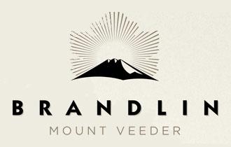 Brandlin logo | VAULT29