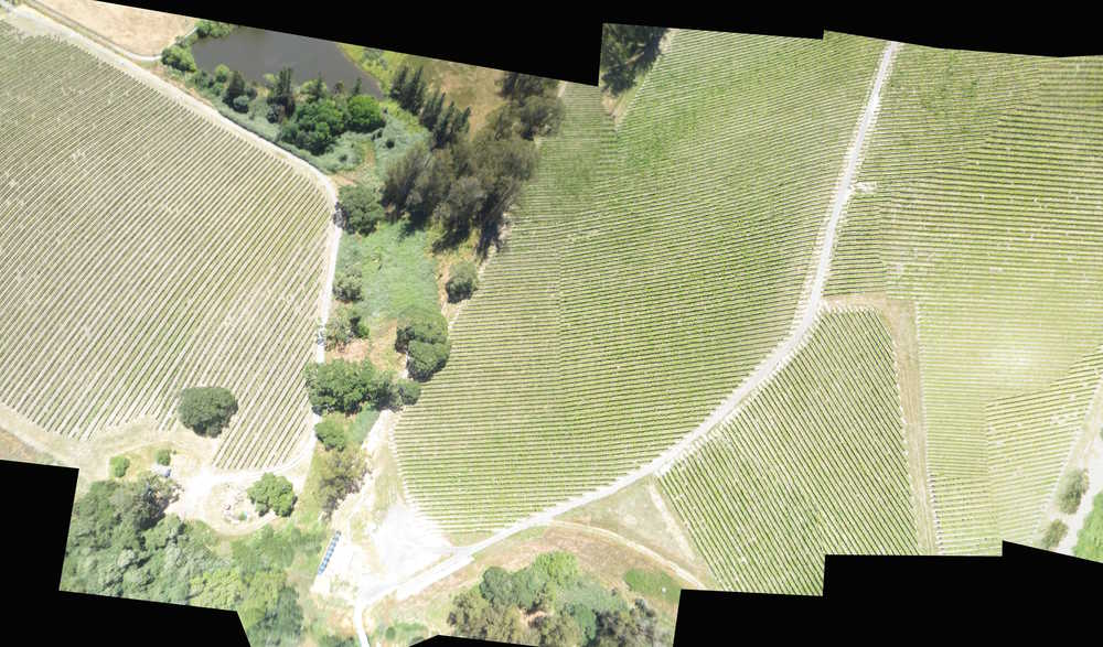 Aerial view of Pinot Hill Vineyards
