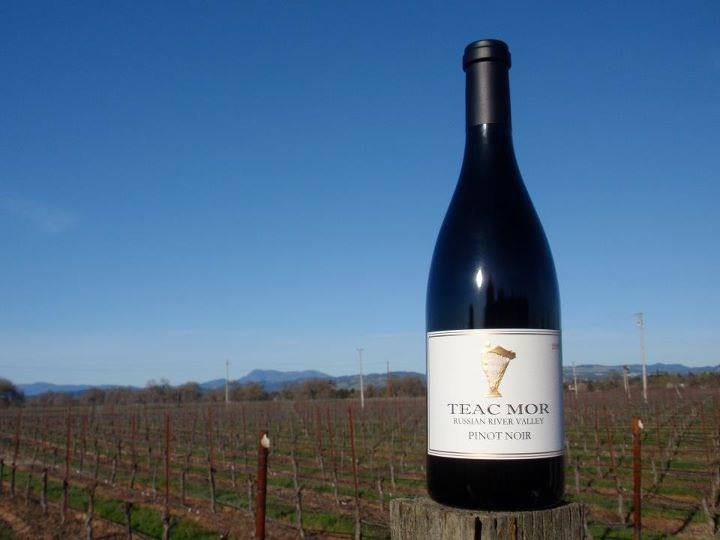 Teac Mor Wines on VAULT29