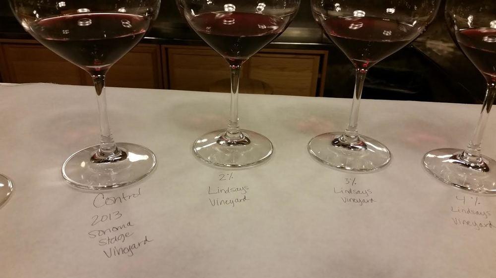 Taste Testing Erin E. Wines | VAULT29
