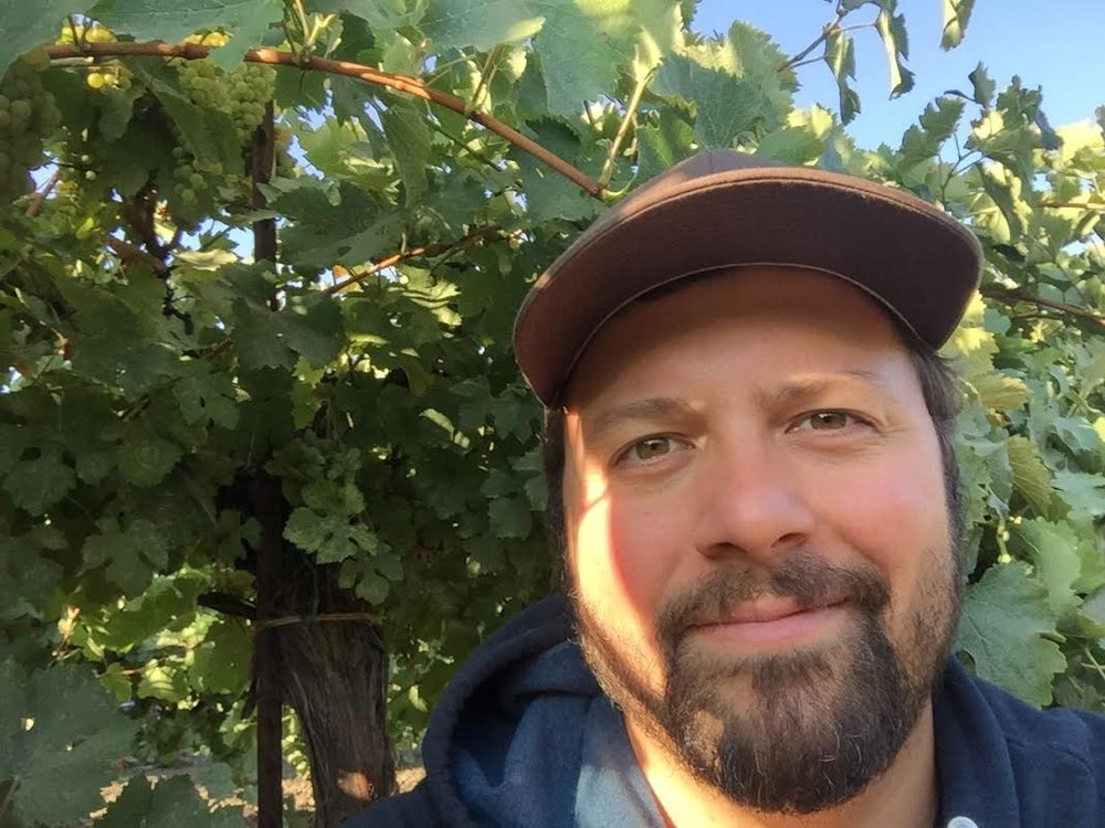 Josh in vineyards.jpg