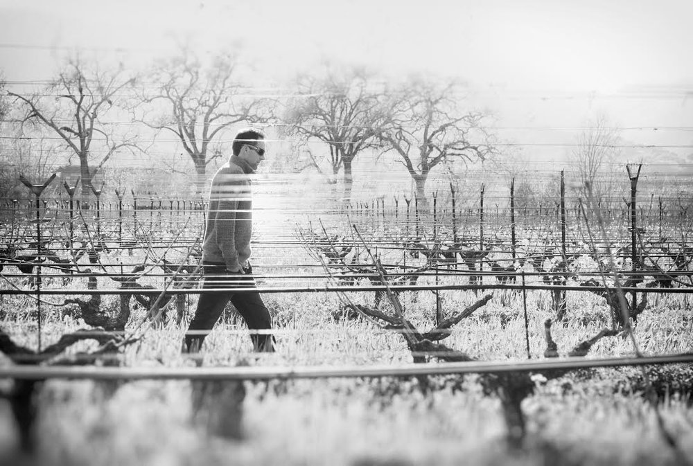 Ryan Knoth|Proprietor/Winemaker