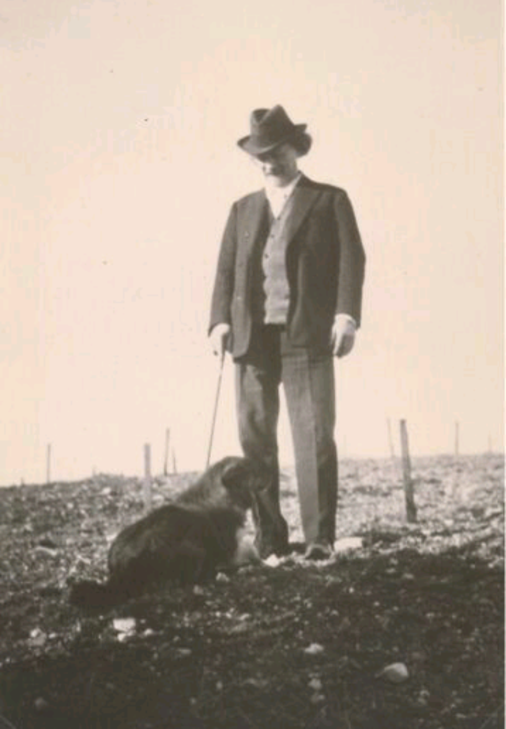 Paderewski standing in his future vineyard in Paso.