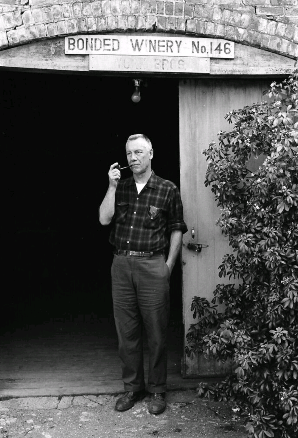 Bill York, Andrews grandson (1940s)
