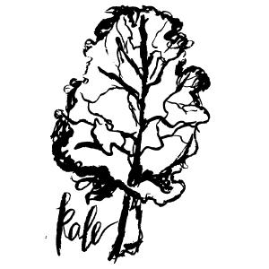 Veggies-10.jpg