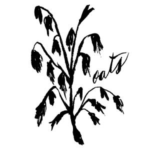 Veggies-15.jpg