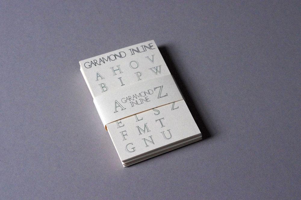 IMGP4541.JPG