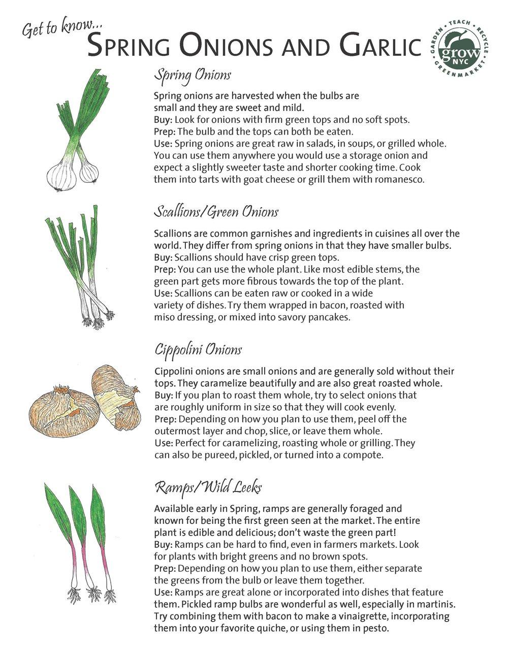 Page 1, Spring Onions & Garlic Handout