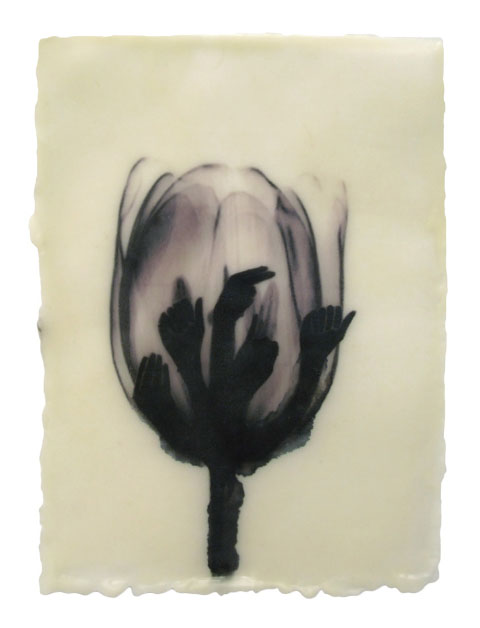 Beth Dary, Tulip Mania, encaustic and egg tempera on paper.