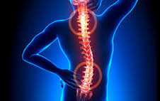 Chiropractic Consultation plus 5 Adjustments from Dr. Mike Young, D.C.