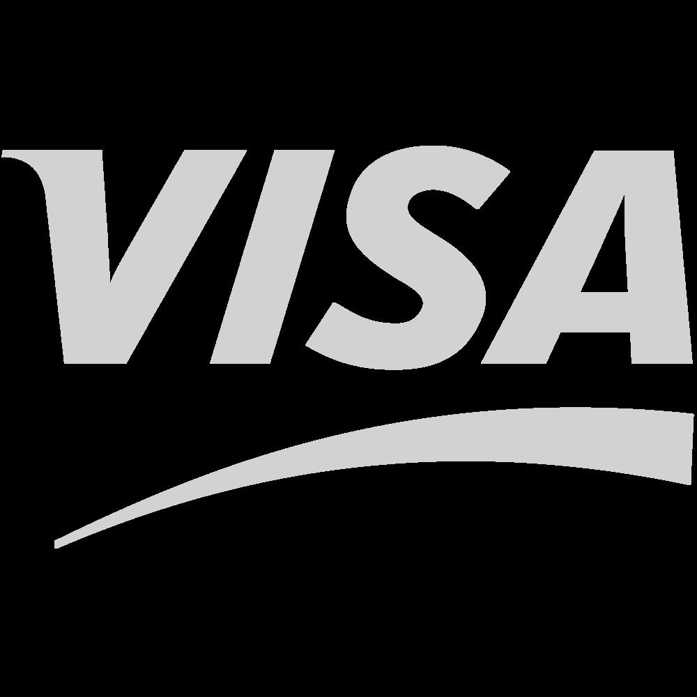 Visa-01.png