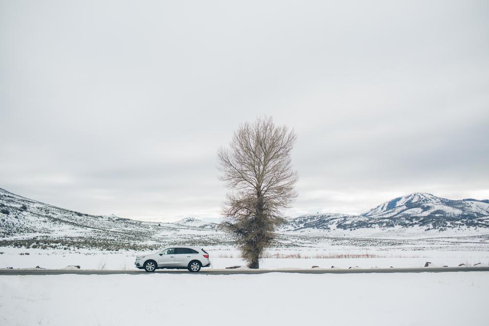 Acura-Cory-Select9.jpg