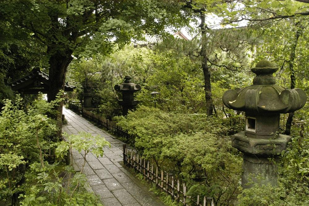 karunaworlwide.temple