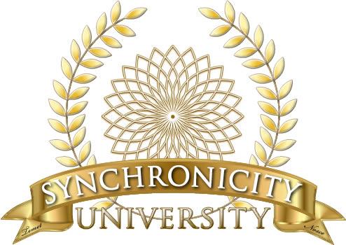 Synchronicity University