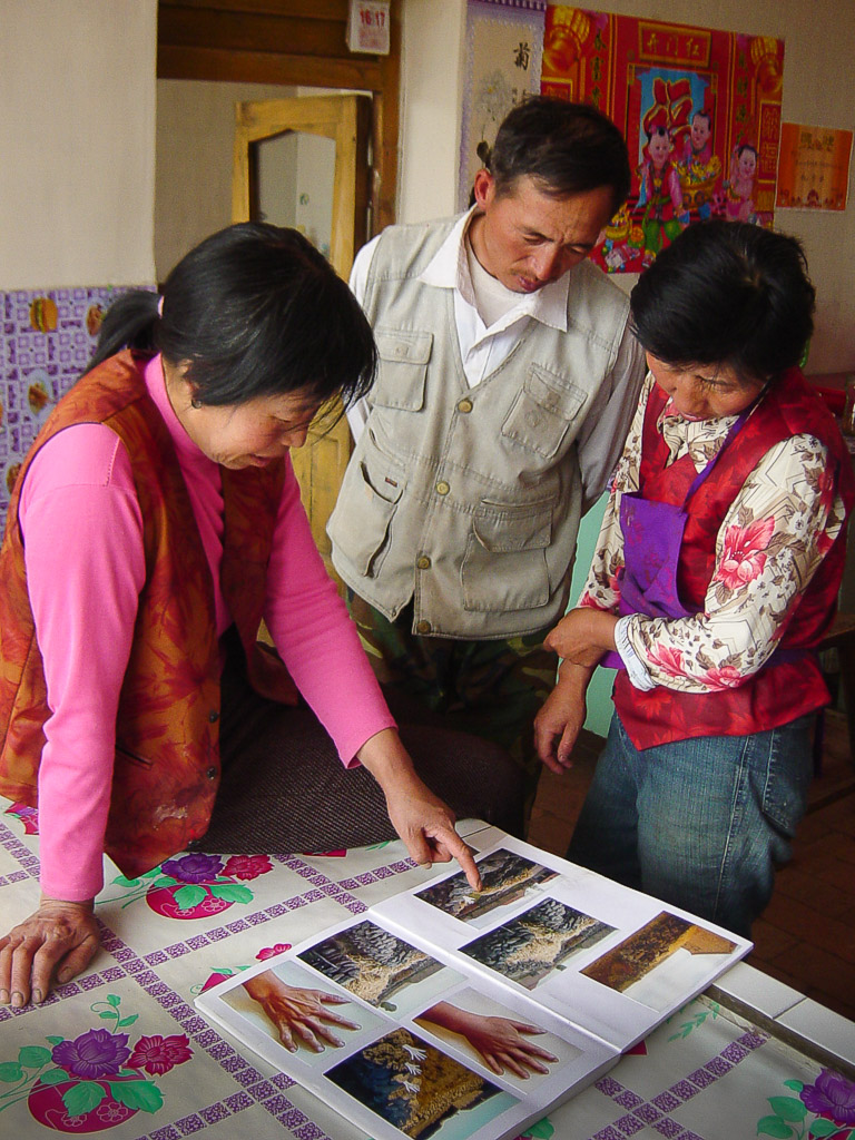 Early supporters of the project, Qiao Hua (in pink), Niu Jinlin and Deng Lin look through the photos I used to introduce the idea.