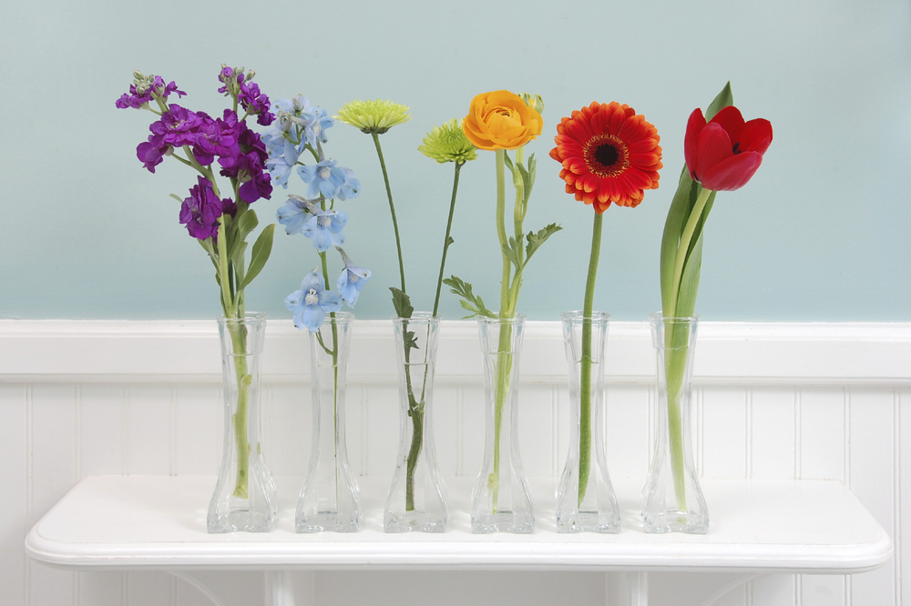 flower-chakras