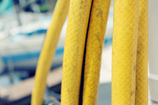 yellow.jpg