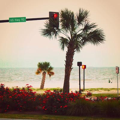beach+veiw.jpg
