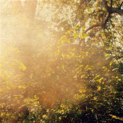 October+Light_phixr.jpg