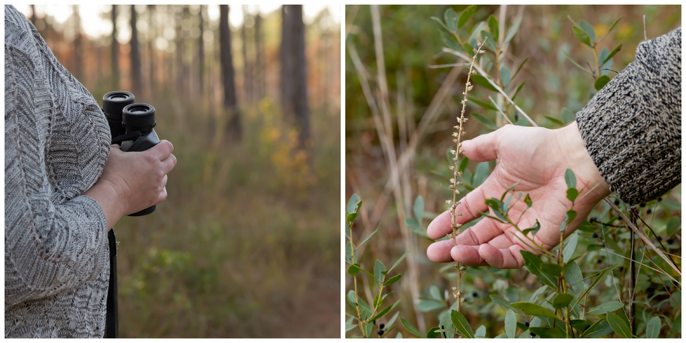 candid woodland engagement photos (Uninvented Colors Photography)