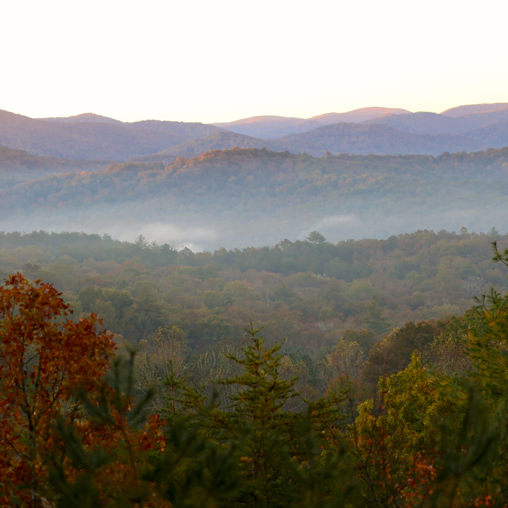 autumn leaves and mountains in Blue Ridge, Georgia