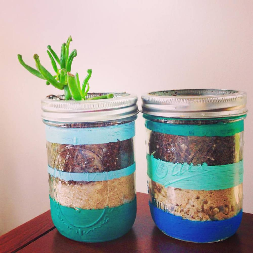 succulents in painted jars (blue, green, turquoise)