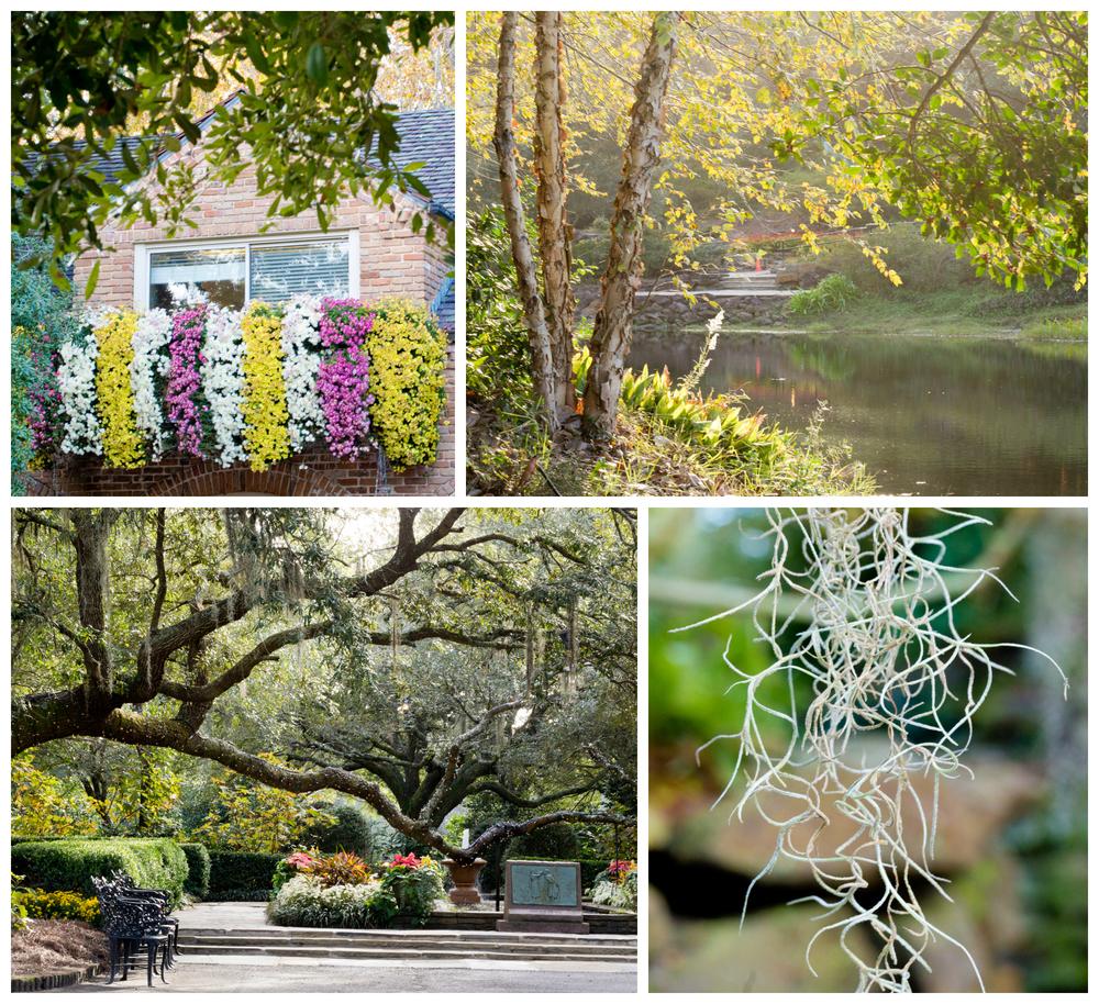 Bellingrath Gardens landscape and architecture