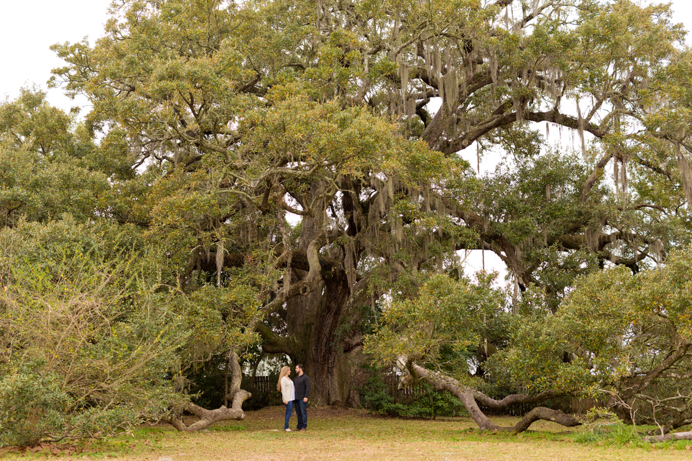 couple in front of Ruskin Oak (Ocean Springs, Mississippi)