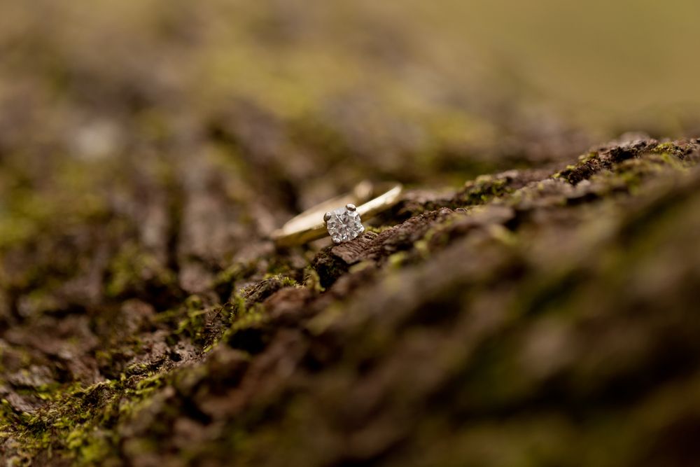 yellow gold diamond engagement ring on mossy tree bark