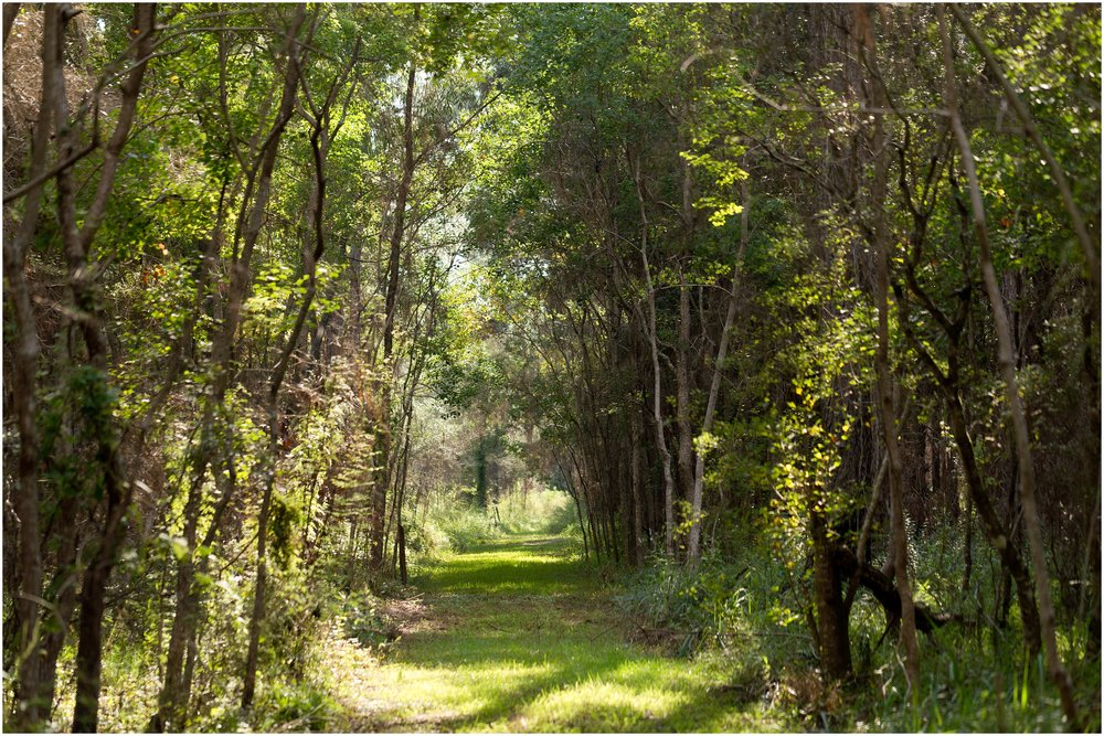 birding trail at Grand Bay Reserve