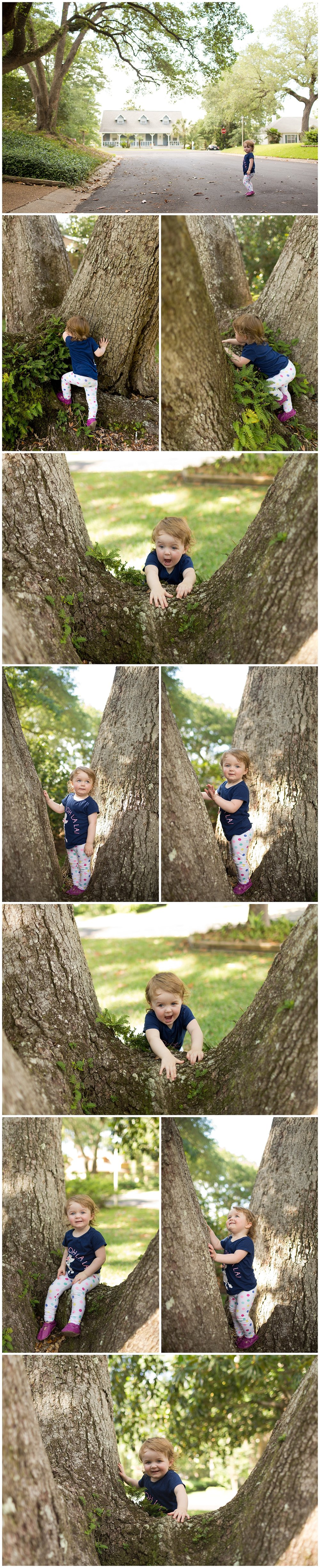 toddler girl climbing tree in Ocean Springs, Mississippi