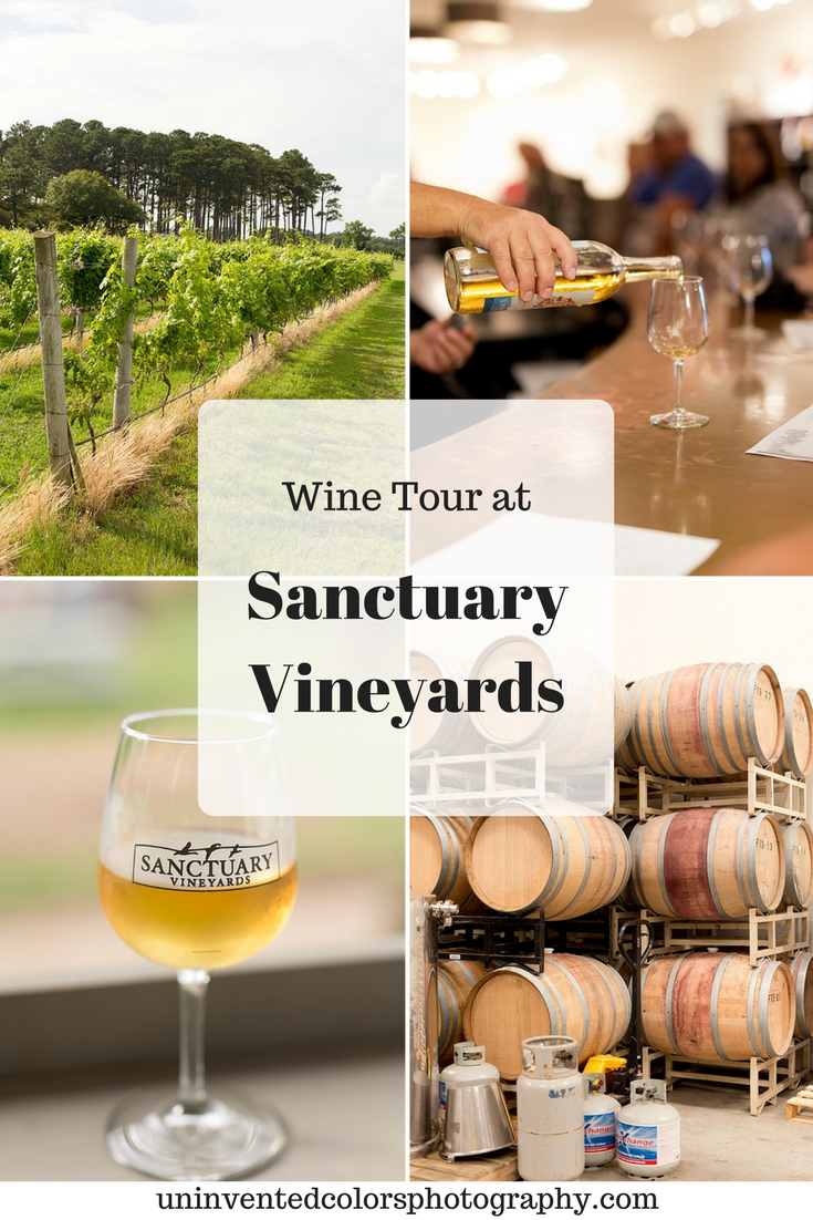 Wine Tour at Sanctuary Vineyards in Jarvisburg, North Carolina - Uninvented Colors Photography