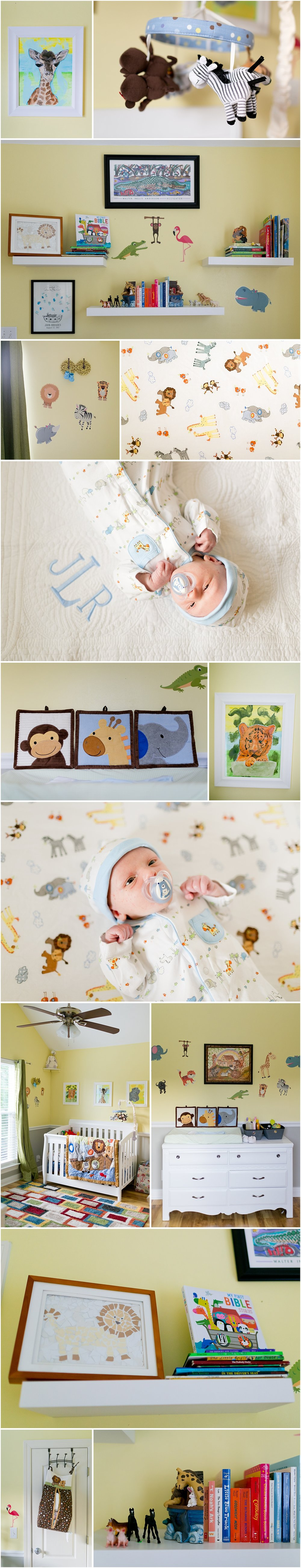 Noah's Ark / Jungle Theme Baby Boy Nursery Decor
