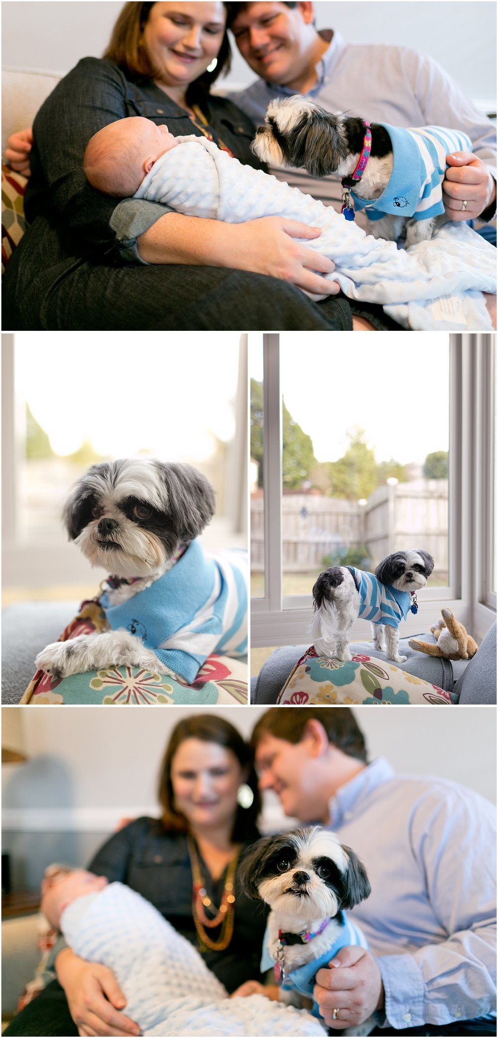 parents with baby boy and puppy - lifestyle family photos at home