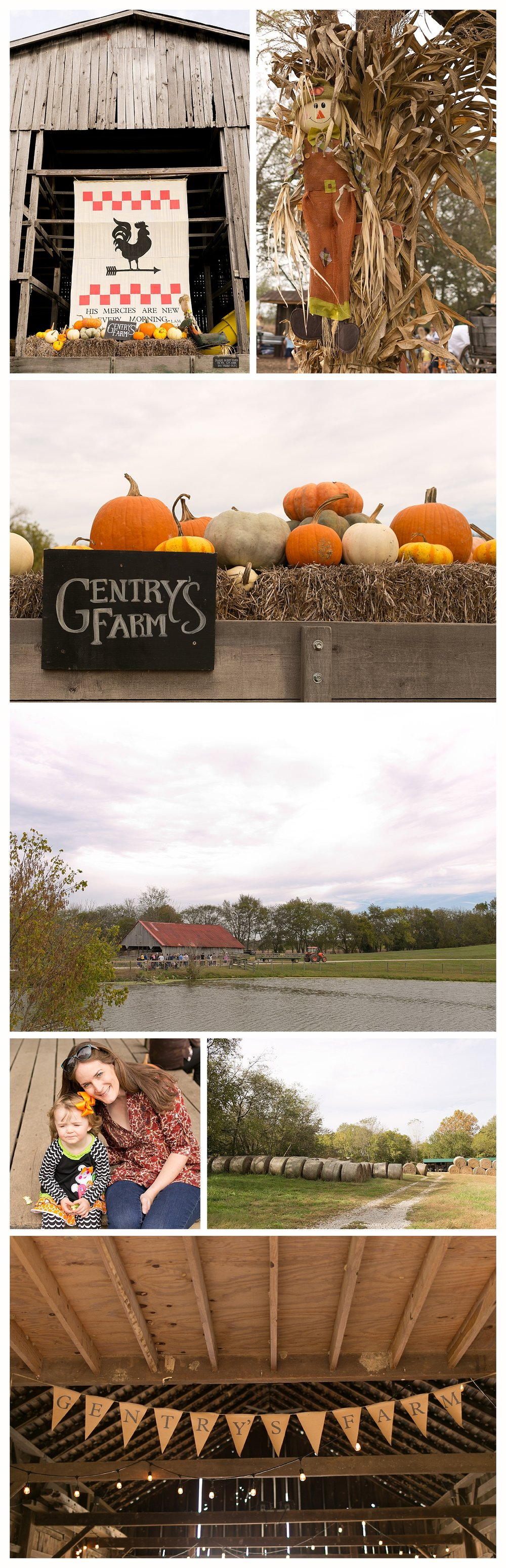 Gentry's Farm in October - Franklin, Tennessee