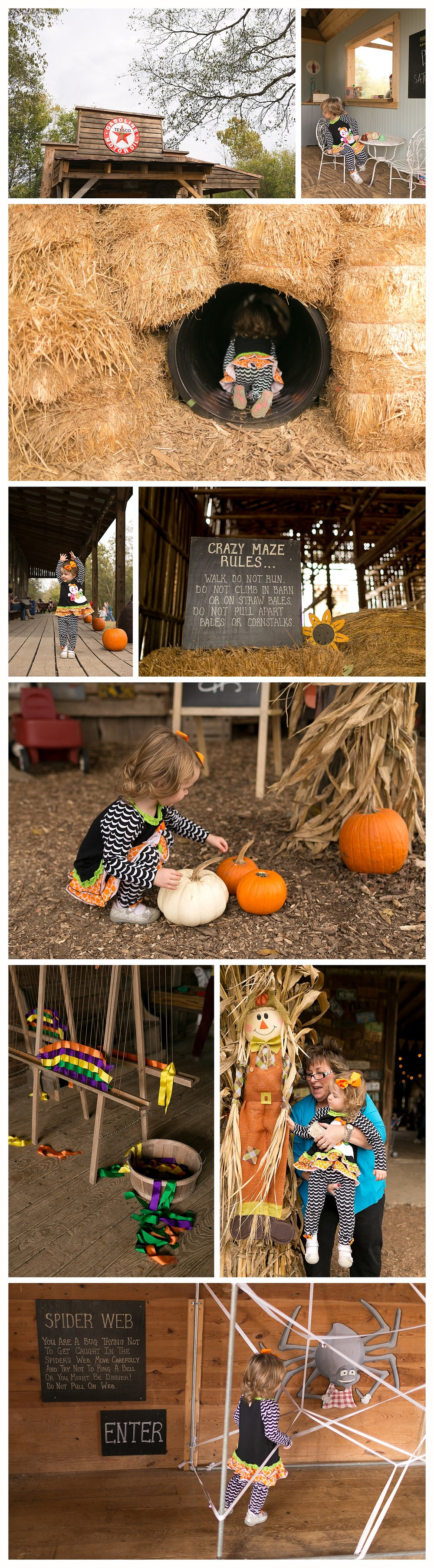 children's activities at Gentry's Farm in Franklin, TN