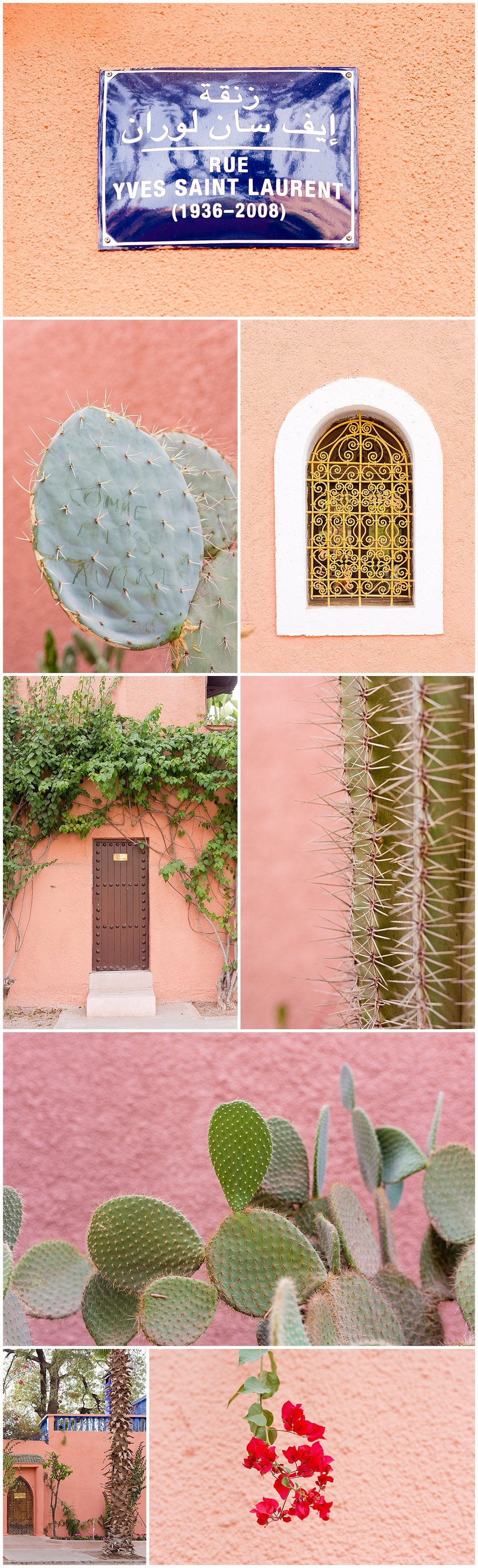 Rue Yves Saint Laurent in Marrakech, Morocco cacti and doors
