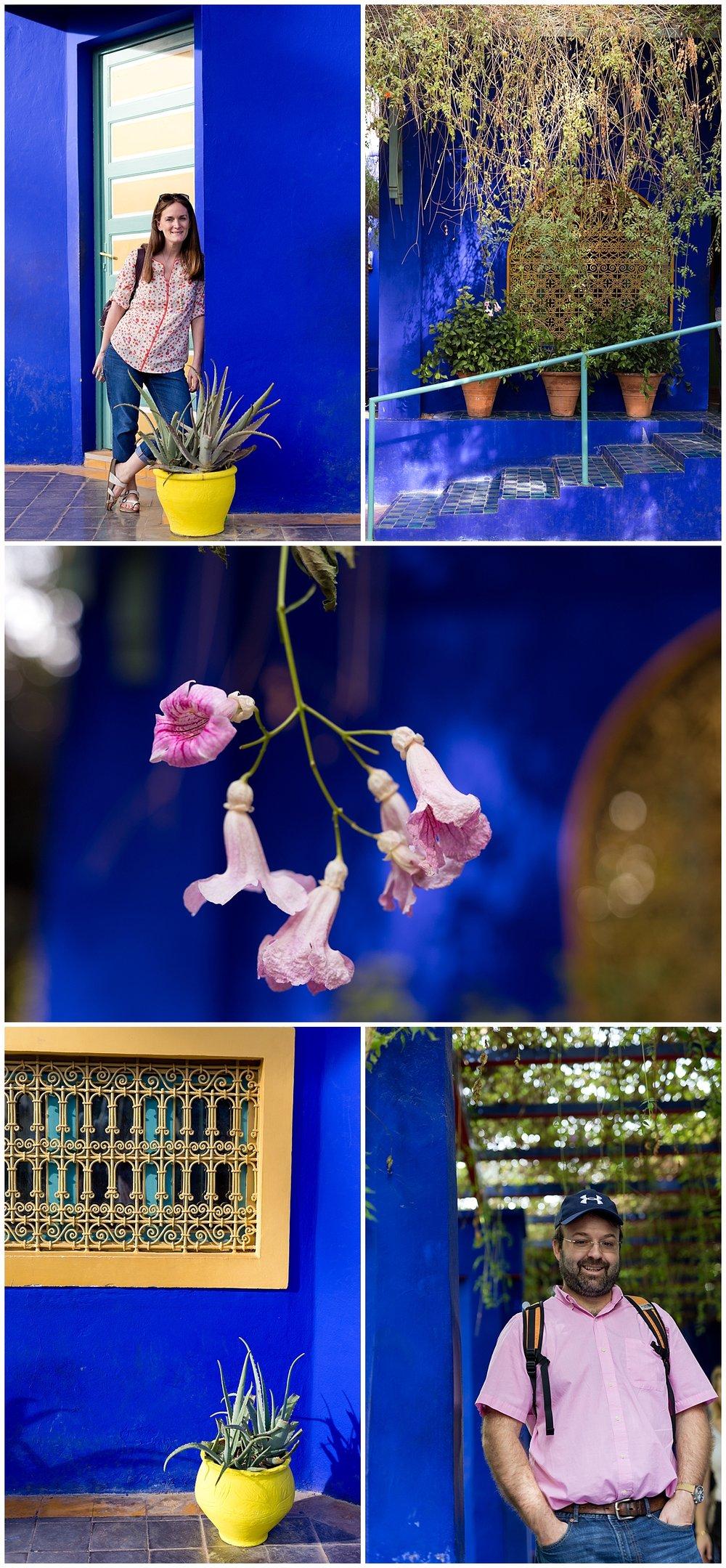bold cobalt blue building at Morocco botanical garden Jardin Majorelle
